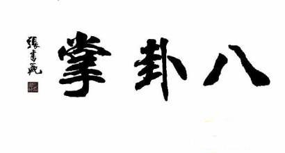 bagua-zhang-wushu
