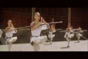 northern shaolin kung fu