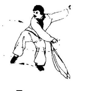 shaolin-mei-hua-dan-dao