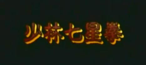 shaolin-qi-xing-quan