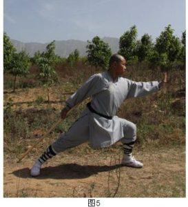 shaolin-yi-shou-staff