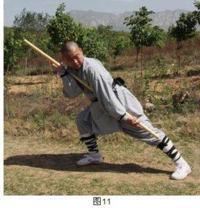 yin-shou-gun